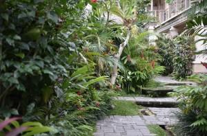 garden_1000